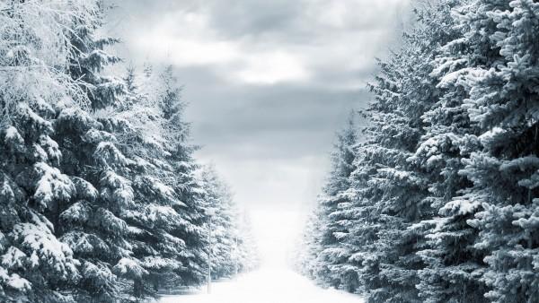 Fondo de Escritorio de un día nevado