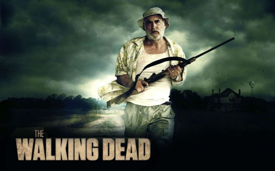 Series Tv. The walking Dead